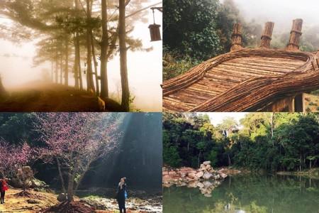 Đà Lạt - Cổng Trời - Hoa Sơn Điền Trang